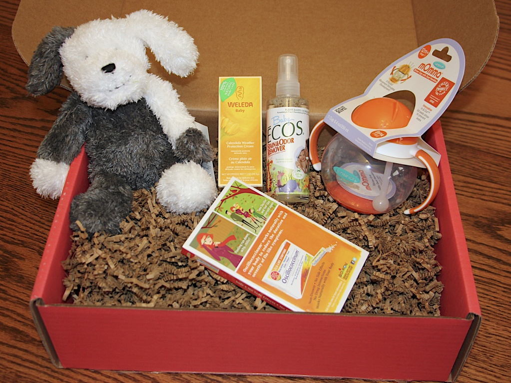 Bluum Box | February 2014 Review (13-Month Old Boy) | The Life of B Blog