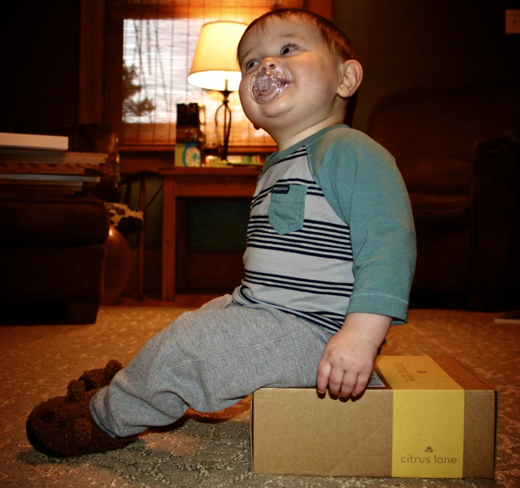 Citrus Lane | March 2014 Review (14-Month-Old Boy)