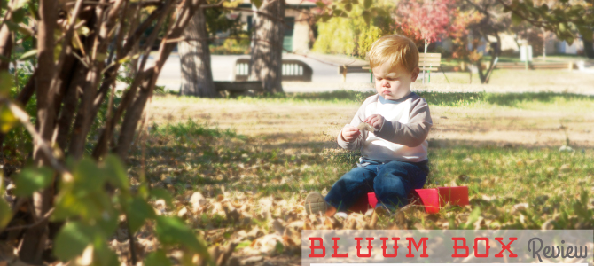 Bluum Box | July 2014 Review (18-Month-Old Boy)
